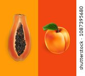 papaya and apricot. vector... | Shutterstock .eps vector #1087395680