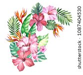 watercolor tropical flowers... | Shutterstock . vector #1087404530