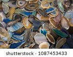 a cross section of agate... | Shutterstock . vector #1087453433
