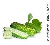fresh  nutritious  tasty green... | Shutterstock .eps vector #1087460204
