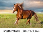 Small photo of Red horse with long blonde mane run in green meadow