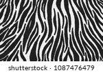 Zebra Fur Skin Seamless Pattern ...