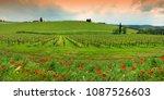 springtime in chianti. red... | Shutterstock . vector #1087526603
