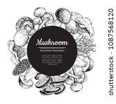 mushroom hand drawn vector...   Shutterstock .eps vector #1087568120