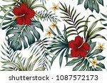 Tropical Vintage Hibiscus...