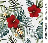 tropical vintage hibiscus... | Shutterstock .eps vector #1087572176