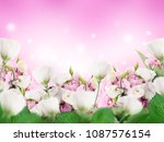 a bouquet of amazing eustoma on ... | Shutterstock . vector #1087576154