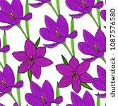 vector seamless natural pattern ... | Shutterstock .eps vector #1087576580