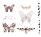 watercolor butterfly set. hand... | Shutterstock . vector #1087630319