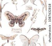 watercolor butterfly seamless... | Shutterstock . vector #1087632818
