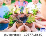 Small photo of People Hands Cupping Plant Nurture Environmental