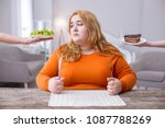 being fat. miserable plump... | Shutterstock . vector #1087788269