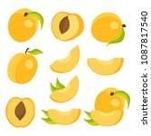 vector collection of fresh... | Shutterstock .eps vector #1087817540