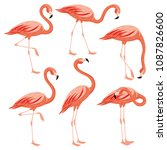 pink flamingos set on a white... | Shutterstock .eps vector #1087826600