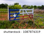 Texas Flag Gate In A Field Of...