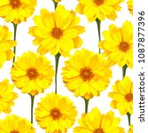 seamless pattern with... | Shutterstock .eps vector #1087877396