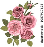 pink  roses _ stylized vector... | Shutterstock .eps vector #1087917623