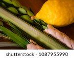 on the festival of sukkot  jews ...   Shutterstock . vector #1087955990