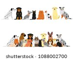 dogs and cats border set | Shutterstock .eps vector #1088002700