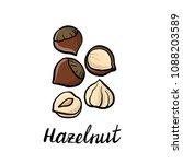 vector drawing hazelnuts  hand... | Shutterstock .eps vector #1088203589