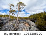 beautiful view of pine trees at ...   Shutterstock . vector #1088205320