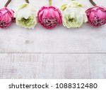 pink and white lotus flowers on ... | Shutterstock . vector #1088312480