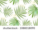 vector palm frond. tropical... | Shutterstock .eps vector #1088318090