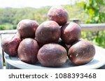 passiflora edulis passion... | Shutterstock . vector #1088393468
