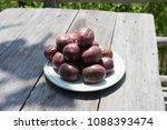 passiflora edulis passion... | Shutterstock . vector #1088393474