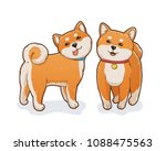 Stock vector two shiba inu dogs both standing and smiling one wearing red collar another in blue collar with a 1088475563