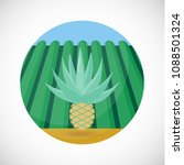 agave heart flat vector icon ...   Shutterstock .eps vector #1088501324