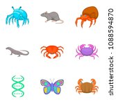 study of fauna icons set....   Shutterstock . vector #1088594870
