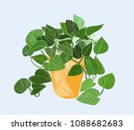 potted plant hand drawn vector...   Shutterstock .eps vector #1088682683