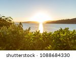 sunrise over wellington ocean... | Shutterstock . vector #1088684330