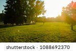 Small photo of Summer park with sun leaks and green cut lawn