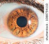 hazel eye macro | Shutterstock . vector #1088754110