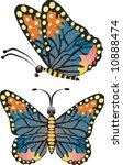 butterfly in two positions | Shutterstock . vector #10888474