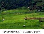 thailand in green season   Shutterstock . vector #1088901494