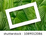 white paper frame with place... | Shutterstock . vector #1089012086