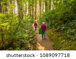 Hikers on a trail at Oswald West State Park.  It is part of the Oregon state park system and is located about 10 miles south of the city of Cannon Beach, on the Pacific Ocean