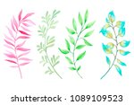 watercolor painting branches... | Shutterstock . vector #1089109523