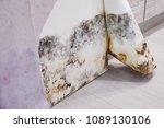 black mold buildup in the... | Shutterstock . vector #1089130106