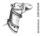 sketch of camel. hand drawn... | Shutterstock .eps vector #1089185048
