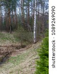forest spring city | Shutterstock . vector #1089269090