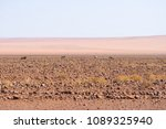 oryx grazing in the namib... | Shutterstock . vector #1089325940
