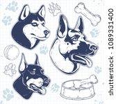set guard dog breeds ... | Shutterstock .eps vector #1089331400
