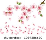 vector illustration of spring... | Shutterstock .eps vector #1089386630