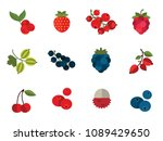 berry icon set. cranberry black ... | Shutterstock .eps vector #1089429650