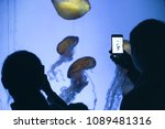 people observing and taking... | Shutterstock . vector #1089481316