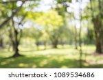 abstract blur city park bokeh... | Shutterstock . vector #1089534686